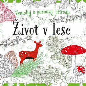 Život v lese - omalovánky - MVhracky.cz