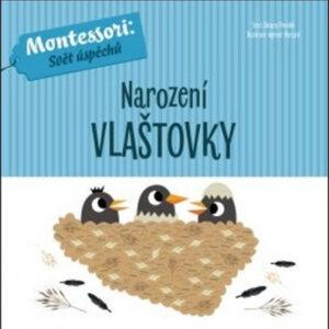 Narození vlaštovky - MVhracky.cz